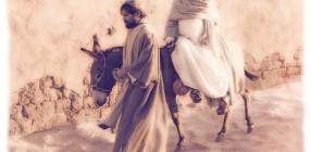JOSEPHandMARY-Donkey